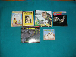 Owl Theme Primary Reading Books with CDs