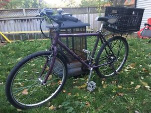 """Reliable Commuter Bike (21 speed, 18"""" frame)"""
