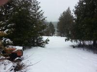 SNOW SNOW SNOW SHOVELING!!!!!