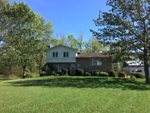 House for Sale - Amberley, ON