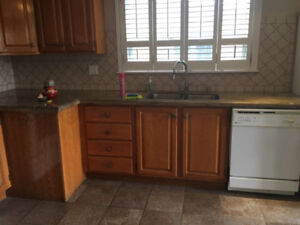 House for Rent close to Emery and York university