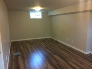 Totally Updated Lower Level of House - Downtown Whitby!