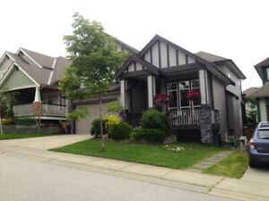 Executive home, LANGLEY , views , great room, 4br, parking.