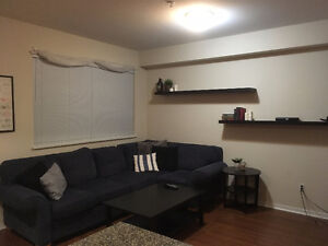 Looking for a Roommate :)