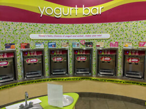 Stoelting FROYO Machies for Sale