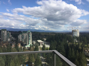 2bd/2bth/27th floor/great view/HGTV style furnished suite