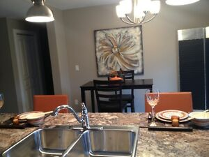 Beautiful newly renovated Condos for Rent in Watrous, SK. Regina Regina Area image 6