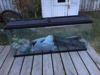 55 gallon fishtank great condition w lights filter etc