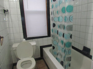 FEMALE ROOMMATE WANTED AT TWO BEDROOM APARTMENT Windsor Region Ontario image 7