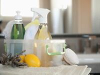 Small Business or Household Cleaning Services