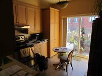 2 chambres ds 5 1/2 très lumineux, grande terrasse sur Plateau