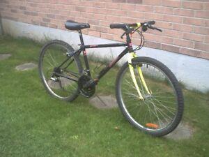 """Mountain bikes 26 & 24"""" tires + Kids bikes"""