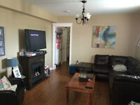 2 Bedroom Basement Apartment in Paradise