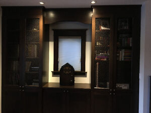 Library Custom Cabinetry with Rubbed Oil Bronze Mesh