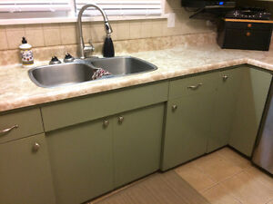 Kitchen Cabinets, Counter Top & Sink