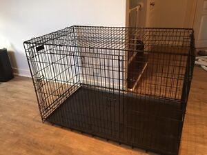 Cage chien qualité PRECISION