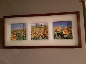 Shadow box sunflower picture