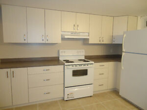 Large All Inclusive One Bedroom Basement Apt, avail May 1st