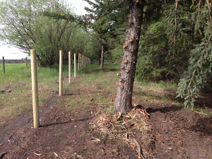 Mulching,selective brush clearing,fencing Strathcona County Edmonton Area image 5