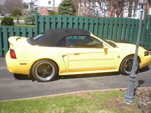 1999 Ford Mustang gt cuir cabroiolet