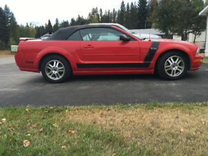 2005 Ford Mustang Gt Boss stickers Convertible