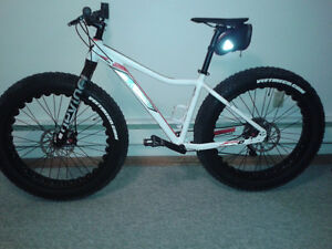 fat bikes for sale