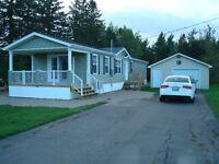 BRAND NEW MINI HOME MODERN DESIGN - Rogersville