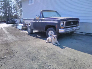74 Convertible 4x4 k5 Project