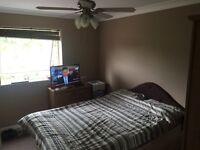 Room for rent Pitsea SS13