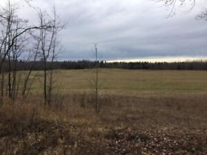 1/4 Section, Undeveloped Farm Land, 5 miles from Edson