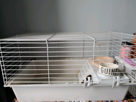 Small pet cage and carrier with sawdust, hay, food, waterproof mats