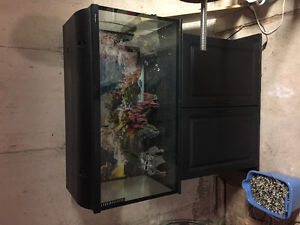 55 gallon fish tank / comes with everything