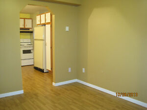 Bright 1 Bedroom in Paradise St. John's Newfoundland image 5
