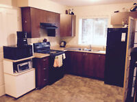 1 Bed Bright Ground Level Legal Suite for rent