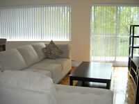 Large Luxurious 2 bedroom Apt. Furnished. Short Term Leasing!