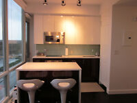 Modern 1 bdrm condo for rent in Westboro/Tunney's Pasture