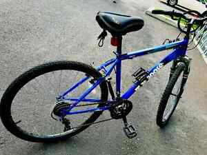 COSTUM MOONGOOSE MOUNTAIN BIKE 26""