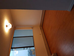 Newly Renovated 2 Bedroom in Burnaby for Rent
