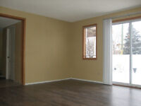 4 bedrooms walk-out basement for renting in Shawnessy area, SW