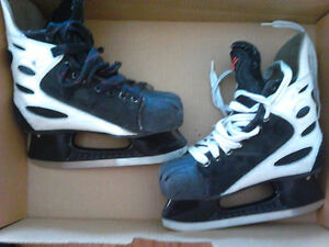 Patins Nike Zoom Air 5.5