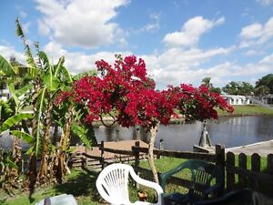 Canadian owned house for rent in North Port, Florida