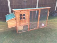 Chicken Coop with Japanese Quail