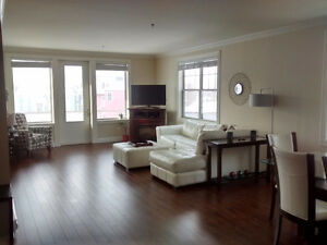 Large 2 Bedroom Downtown/ Central Condo Til End of May