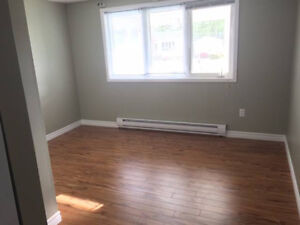 One bedroom apt in gander