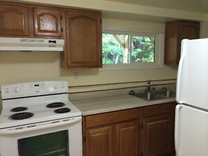 Bachelor Apartment for Rent in Douglastown