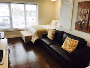 DELUXE STUDIO & 1 BDRM APARTMENTS DOWNTOWN RESERVE FOR SEPT 1ST