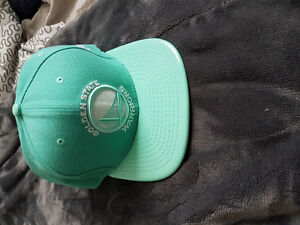 Golden State Warriors New Era Mint Green Solid Shine 9FIFTY Snap