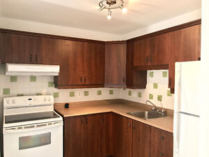 Beautiful 1 Bedroom Condo with ALL Appliances + 1 Parking Spot