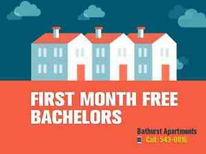 Bachelor apartments - first month free