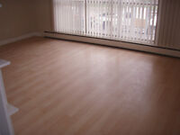 Completely Newly Renovated 1 Bedroom Apartment for Rent